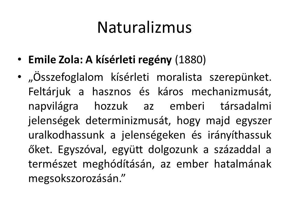 Naturalizmus Emile Zola: A kísérleti regény (1880)