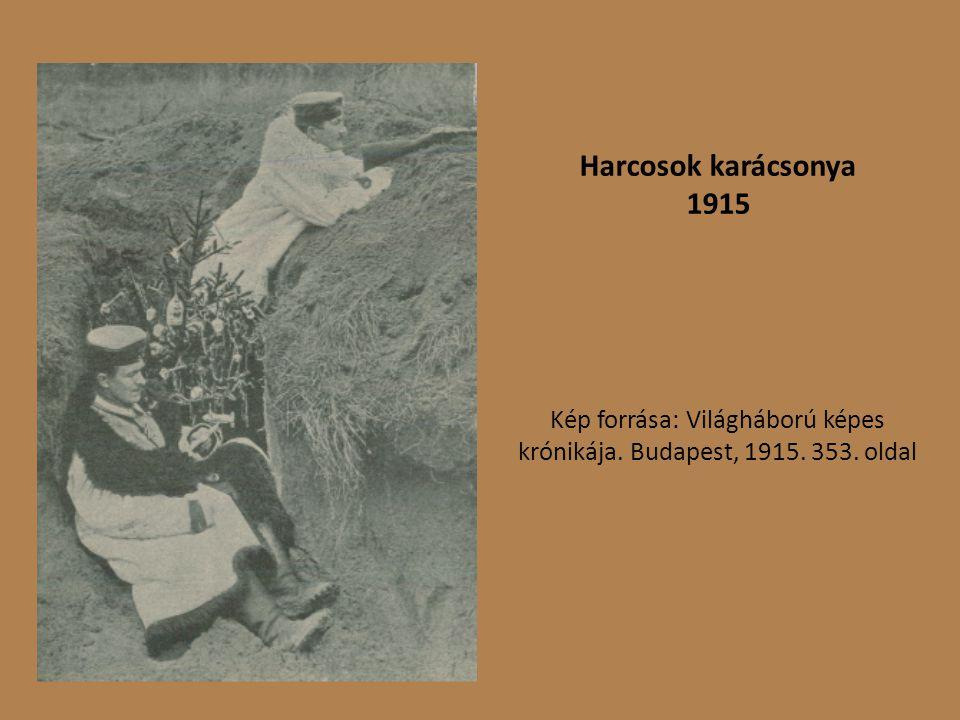 Kép forrása: Világháború képes krónikája. Budapest, 1915. 353. oldal