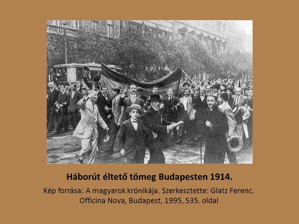 Háborút éltető tömeg Budapesten 1914.