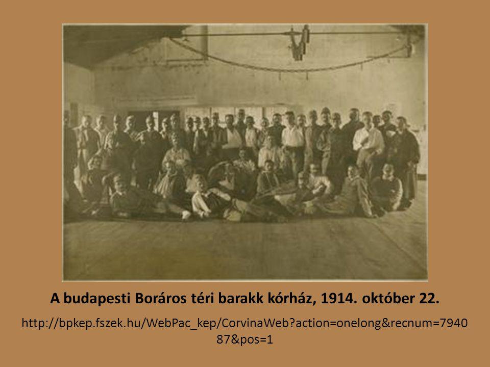 A budapesti Boráros téri barakk kórház, 1914. október 22.