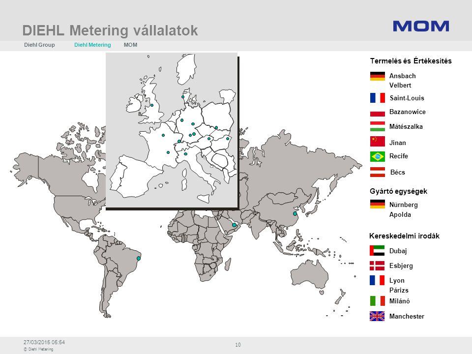 DIEHL Metering vállalatok