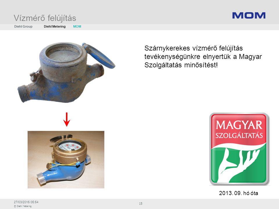 Vízmérő felújítás Diehl Group. Diehl Metering. MOM. Szárnykerekes vízmérő felújítás tevékenységünkre elnyertük a Magyar Szolgáltatás minősítést!