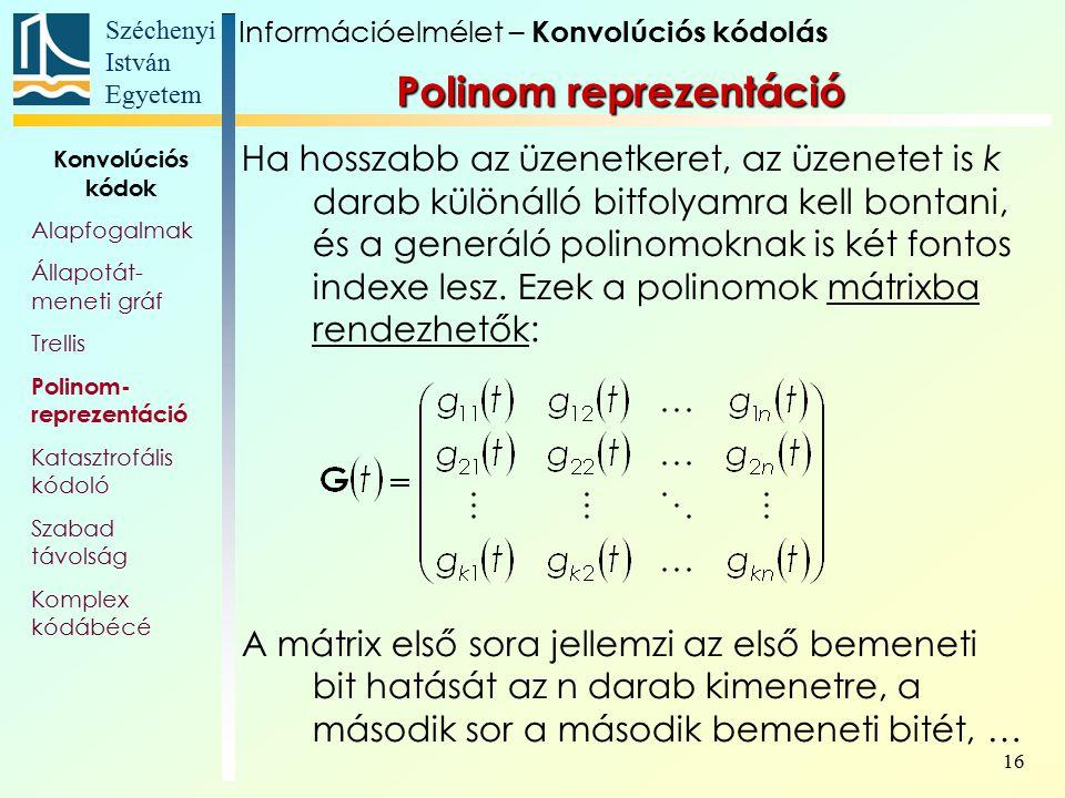 Polinom reprezentáció