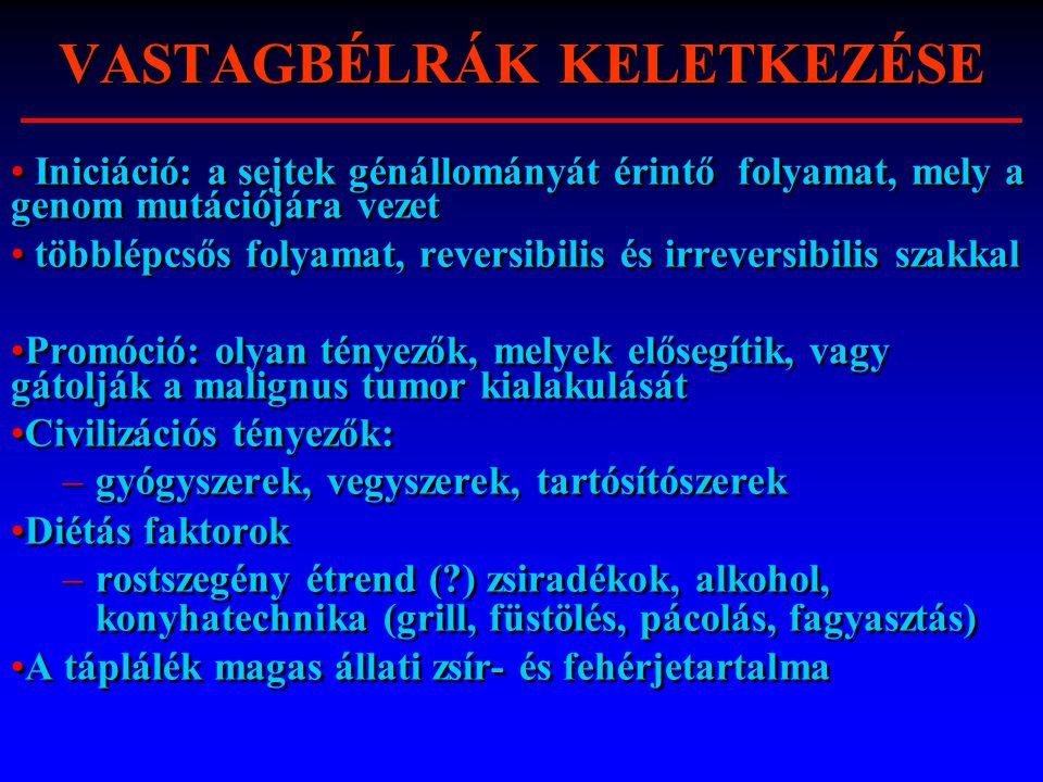 VASTAGBÉLRÁK KELETKEZÉSE