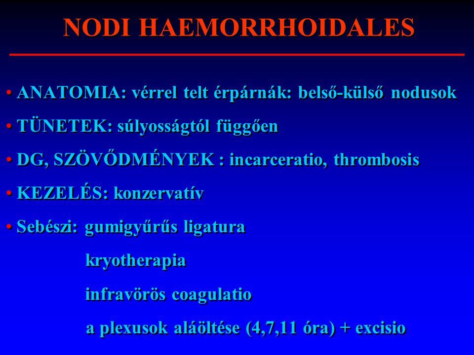 NODI HAEMORRHOIDALES ANATOMIA: vérrel telt érpárnák: belső-külső nodusok. TÜNETEK: súlyosságtól függően.