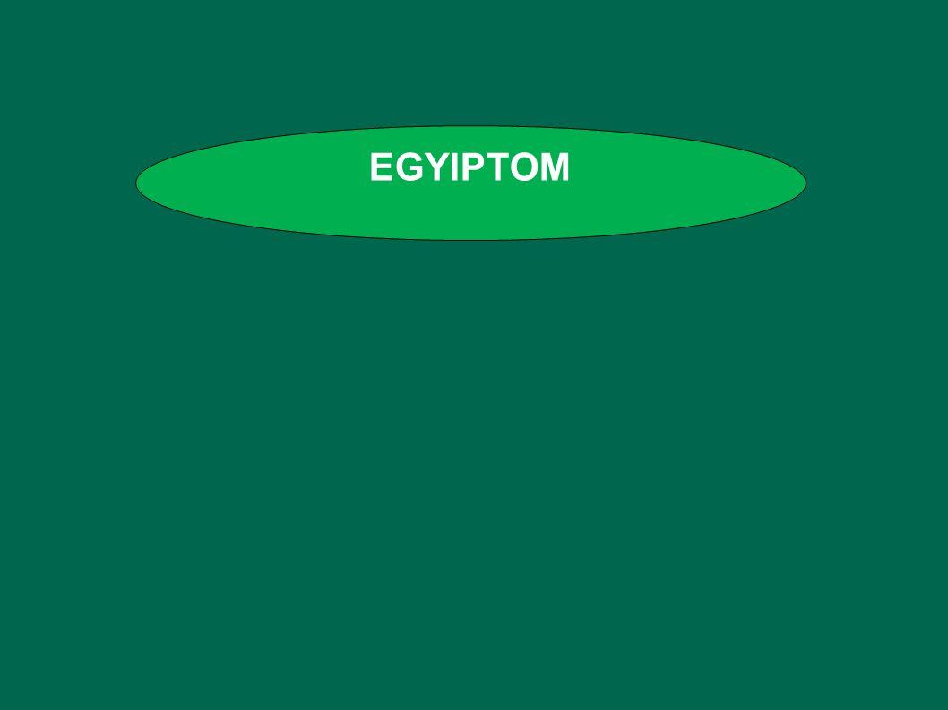 EGYIPTOM Tanmenet: Egyiptom F: bronzkor, vaskor, nemzetség, despotizmus, öntözéses földművelés.