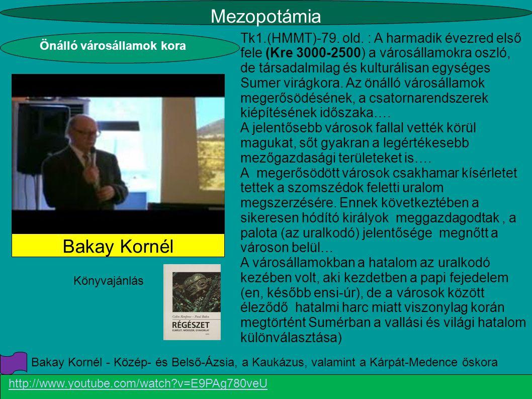 Mezopotámia Bakay Kornél