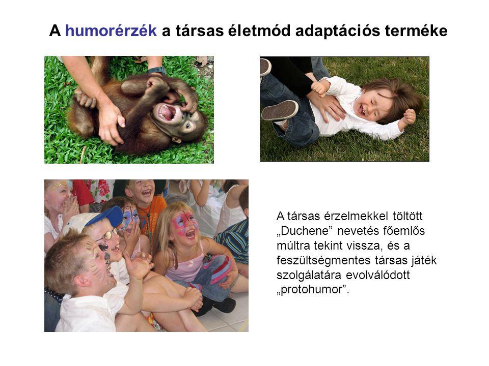A humorérzék a társas életmód adaptációs terméke