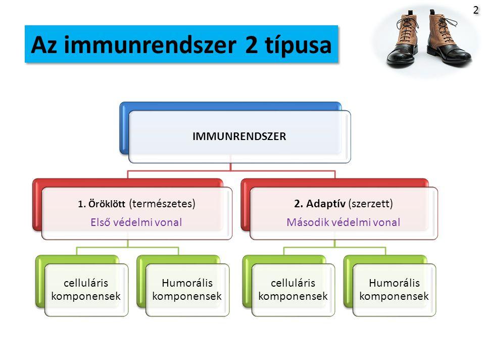 Az immunrendszer 2 típusa