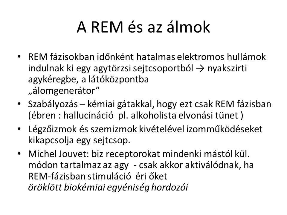 A REM és az álmok
