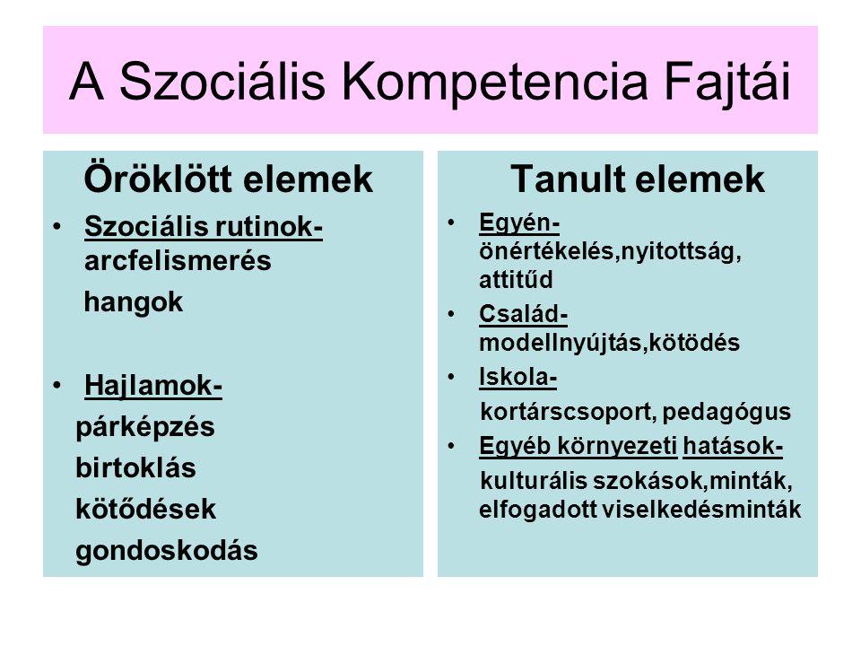 A Szociális Kompetencia Fajtái