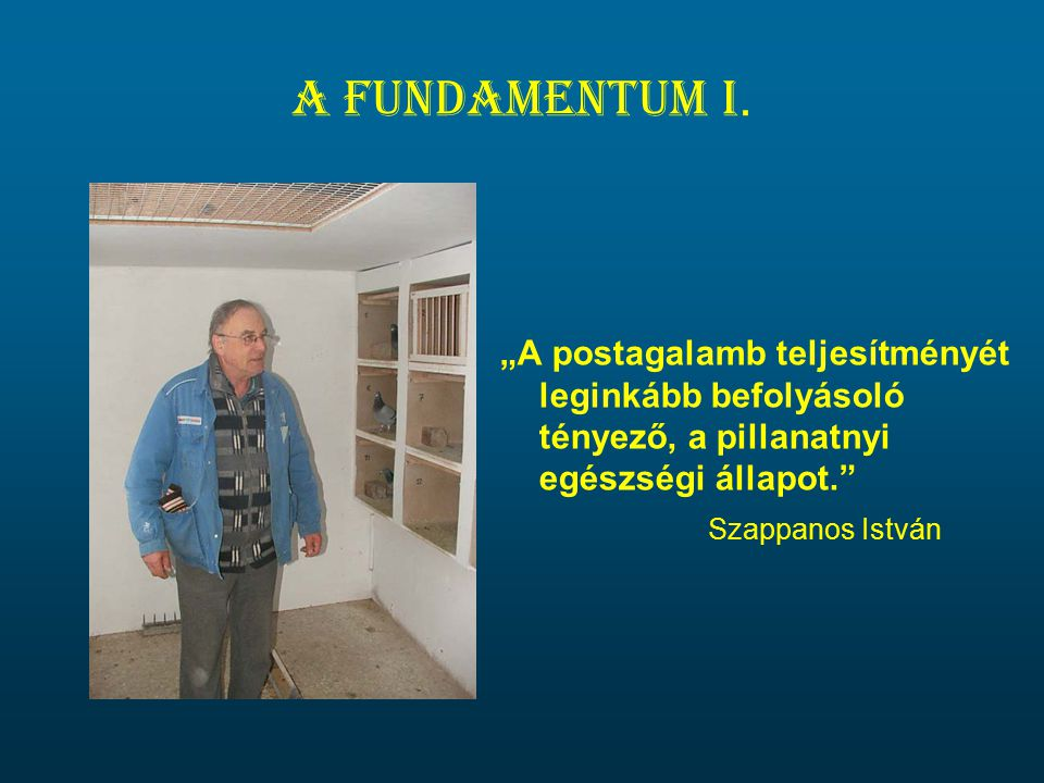 A fundamentum I.