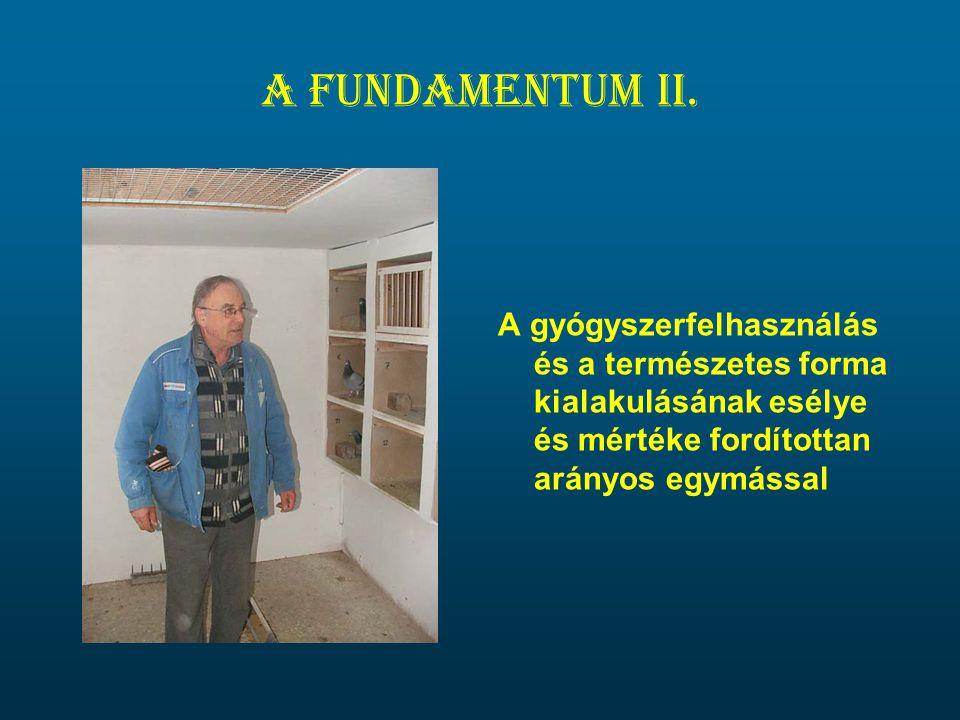 A fundamentum II.