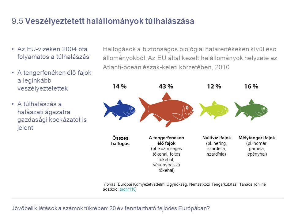 9.5 Veszélyeztetett halállományok túlhalászása