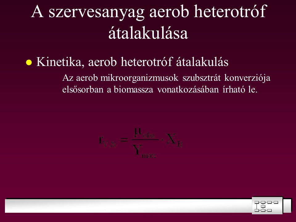 A szervesanyag aerob heterotróf átalakulása