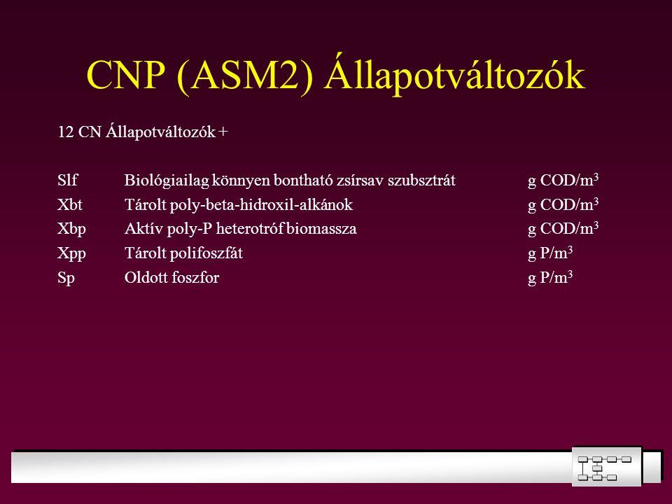 CNP (ASM2) Állapotváltozók