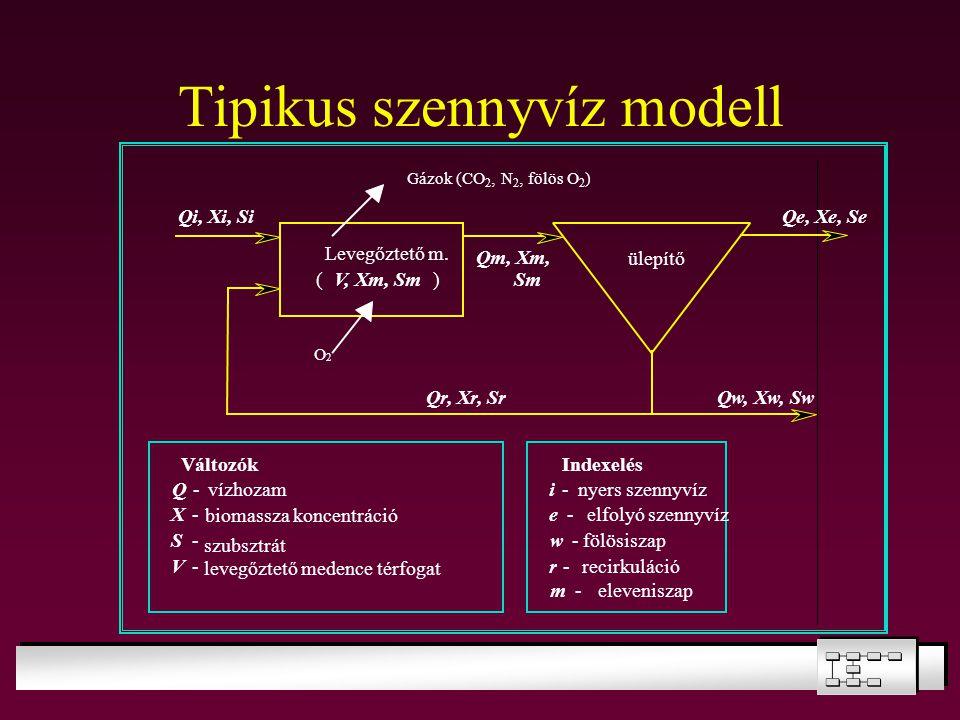 Tipikus szennyvíz modell