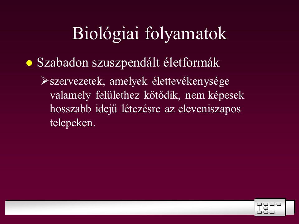 Biológiai folyamatok Szabadon szuszpendált életformák