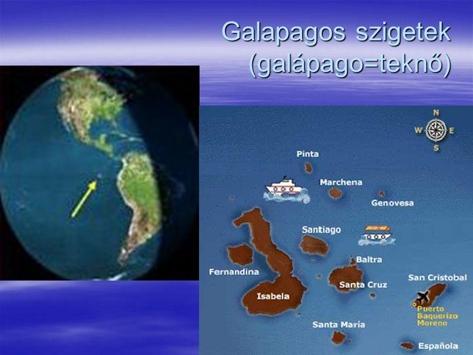 Galapagos szigetek (galápago=teknő)
