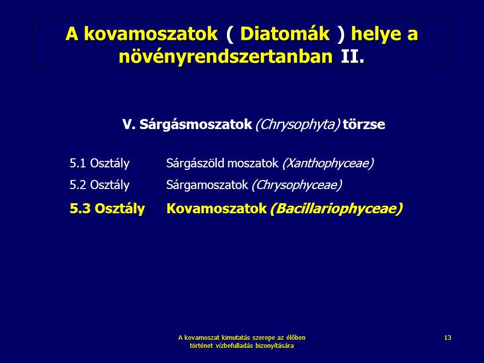 A kovamoszatok ( Diatomák ) helye a növényrendszertanban II.