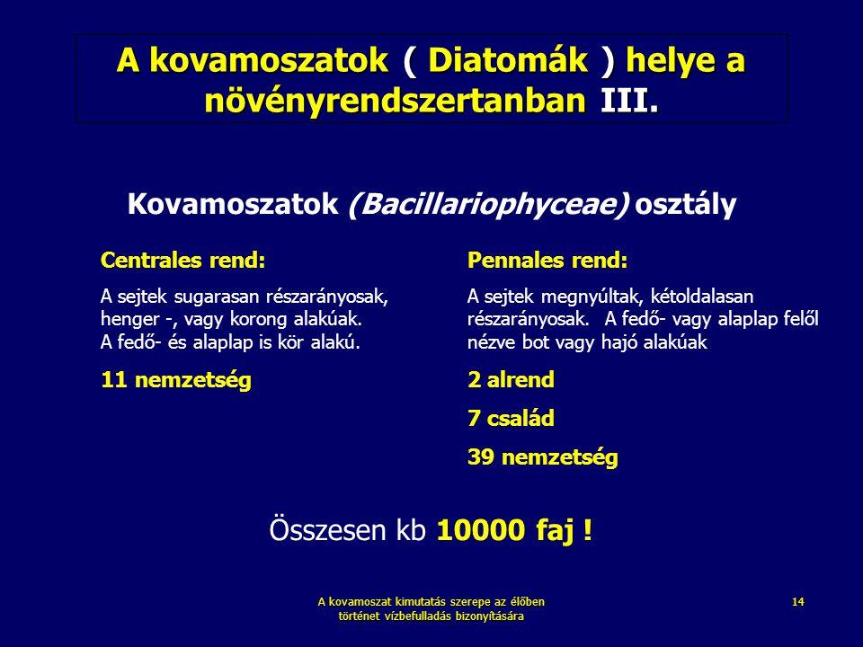 A kovamoszatok ( Diatomák ) helye a növényrendszertanban III.