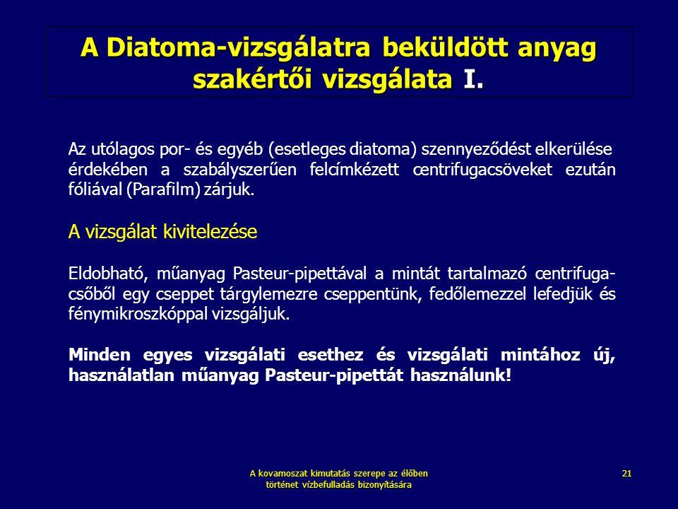 A Diatoma-vizsgálatra beküldött anyag szakértői vizsgálata I.