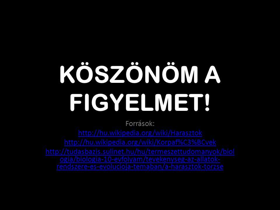 KÖSZÖNÖM A FIGYELMET! Források: http://hu.wikipedia.org/wiki/Harasztok