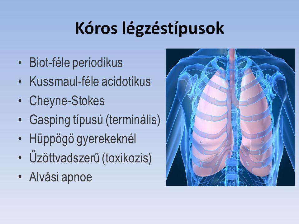Kóros légzéstípusok Biot-féle periodikus Kussmaul-féle acidotikus