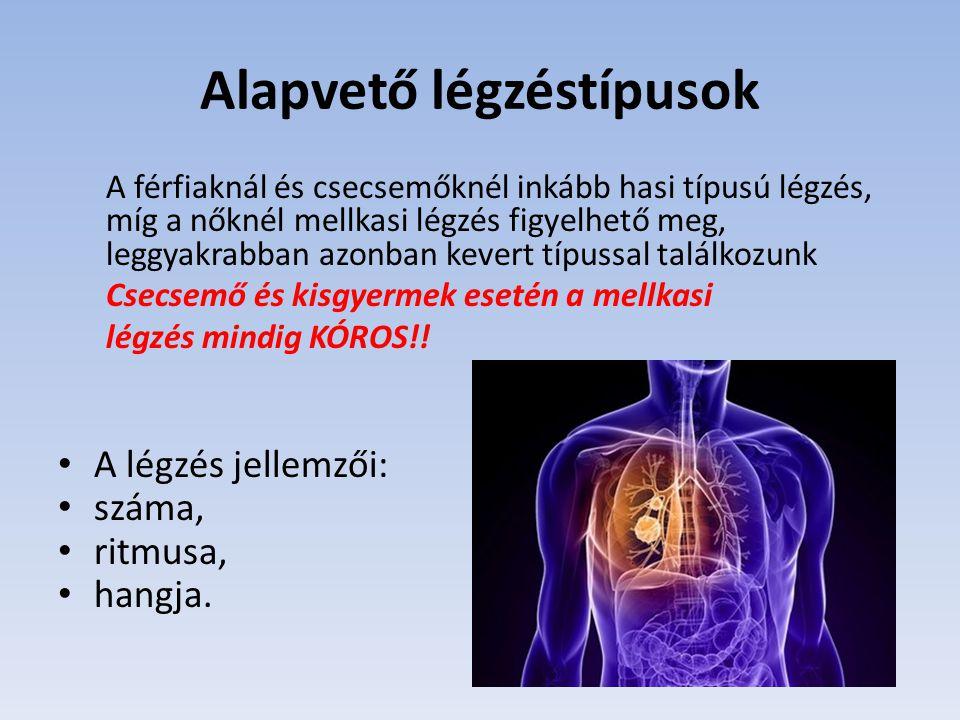 Alapvető légzéstípusok