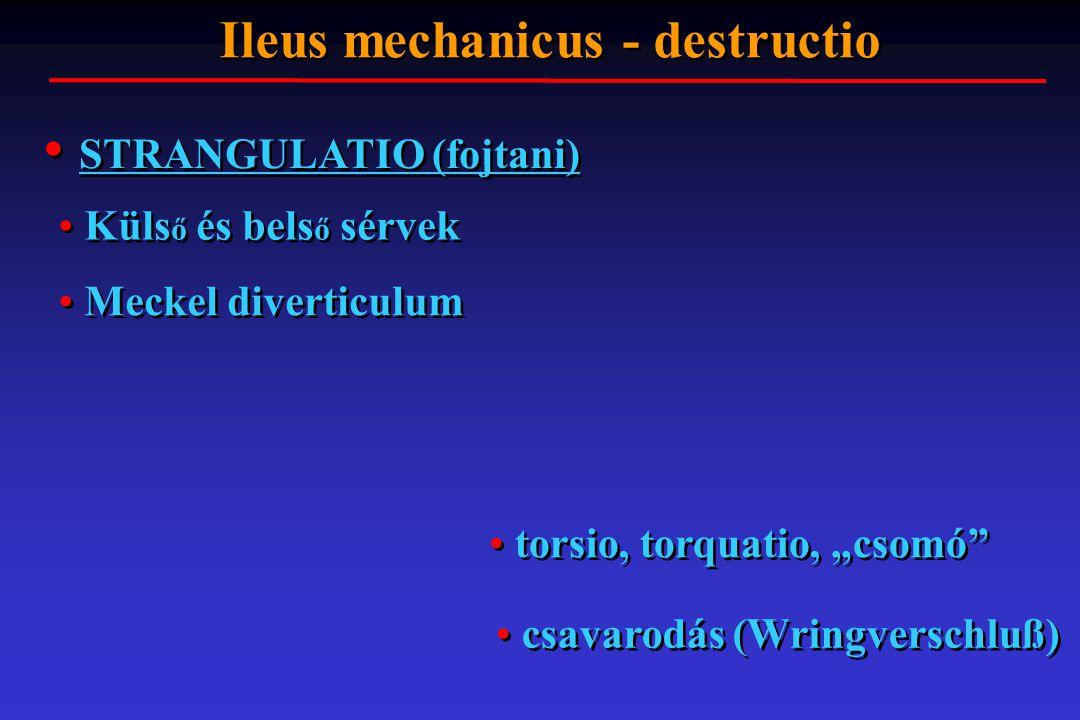 Ileus mechanicus - destructio