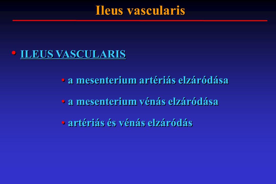ILEUS VASCULARIS Ileus vascularis a mesenterium artériás elzáródása