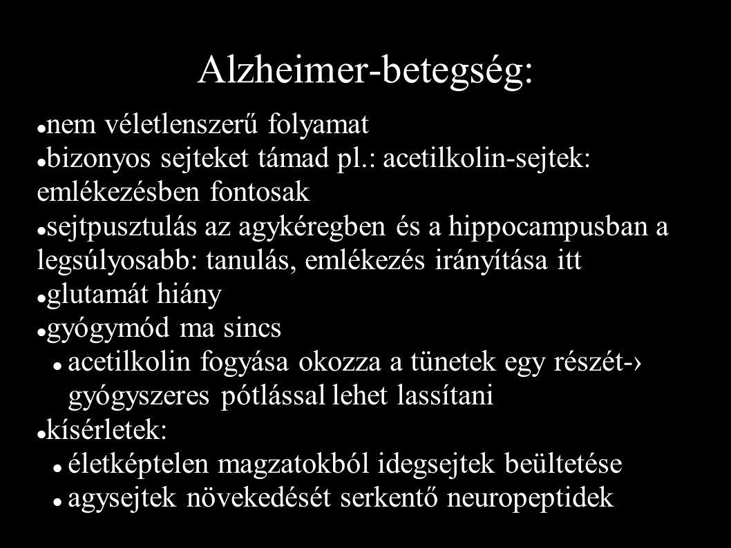 Alzheimer-betegség: nem véletlenszerű folyamat