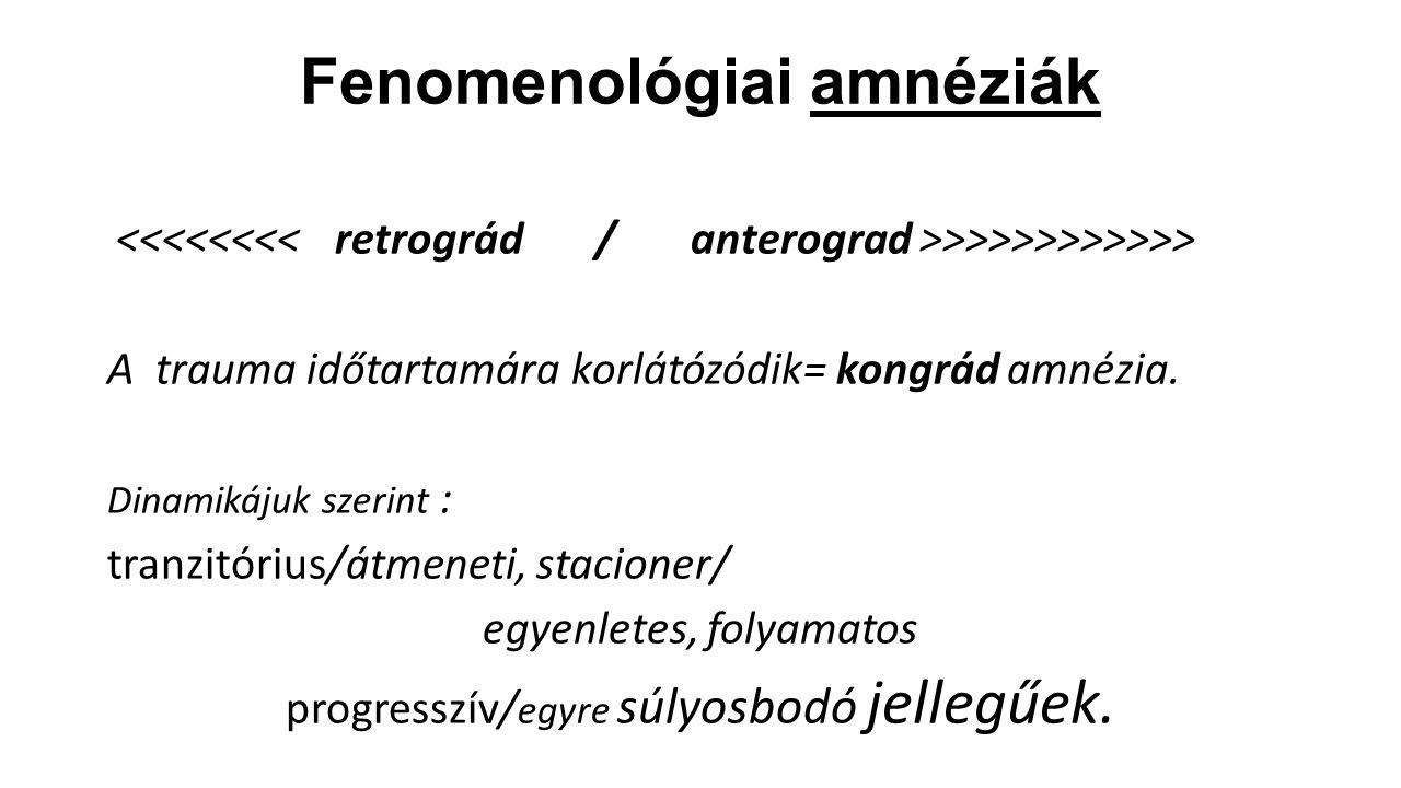 Fenomenológiai amnéziák
