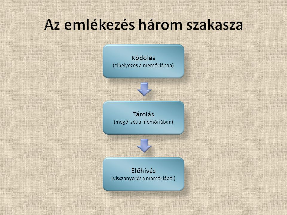 Az emlékezés három szakasza