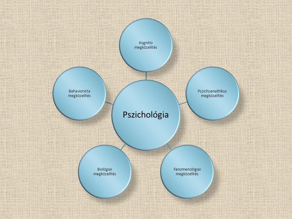 Kognitív megközelítés Pszichoanalitikus megközelítés