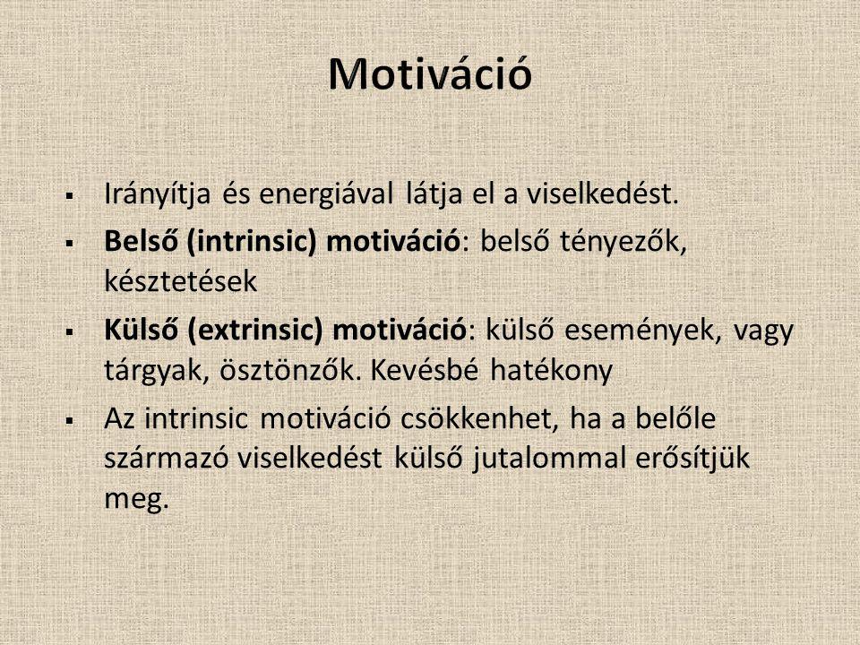 Motiváció Irányítja és energiával látja el a viselkedést.