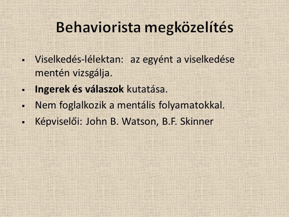 Behaviorista megközelítés