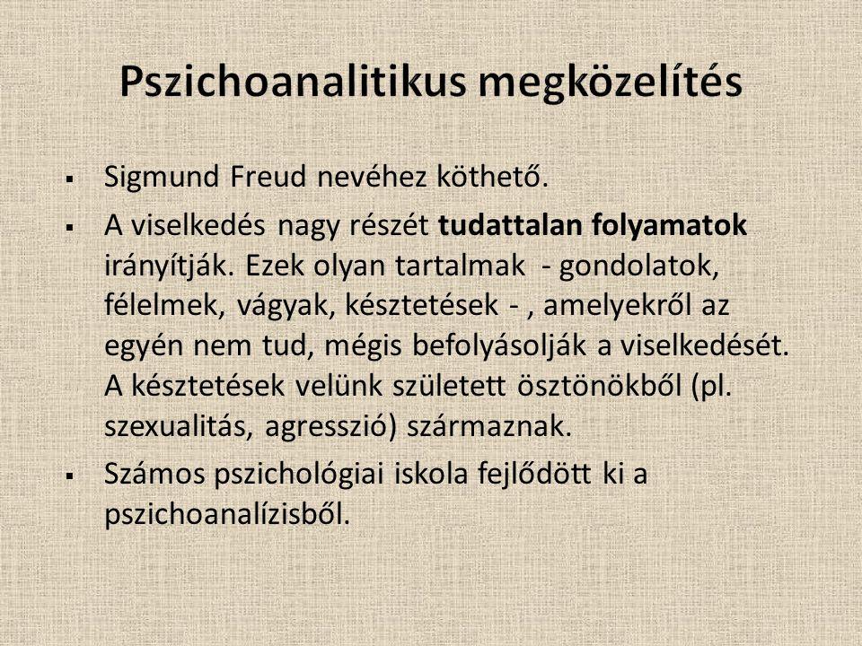 Pszichoanalitikus megközelítés