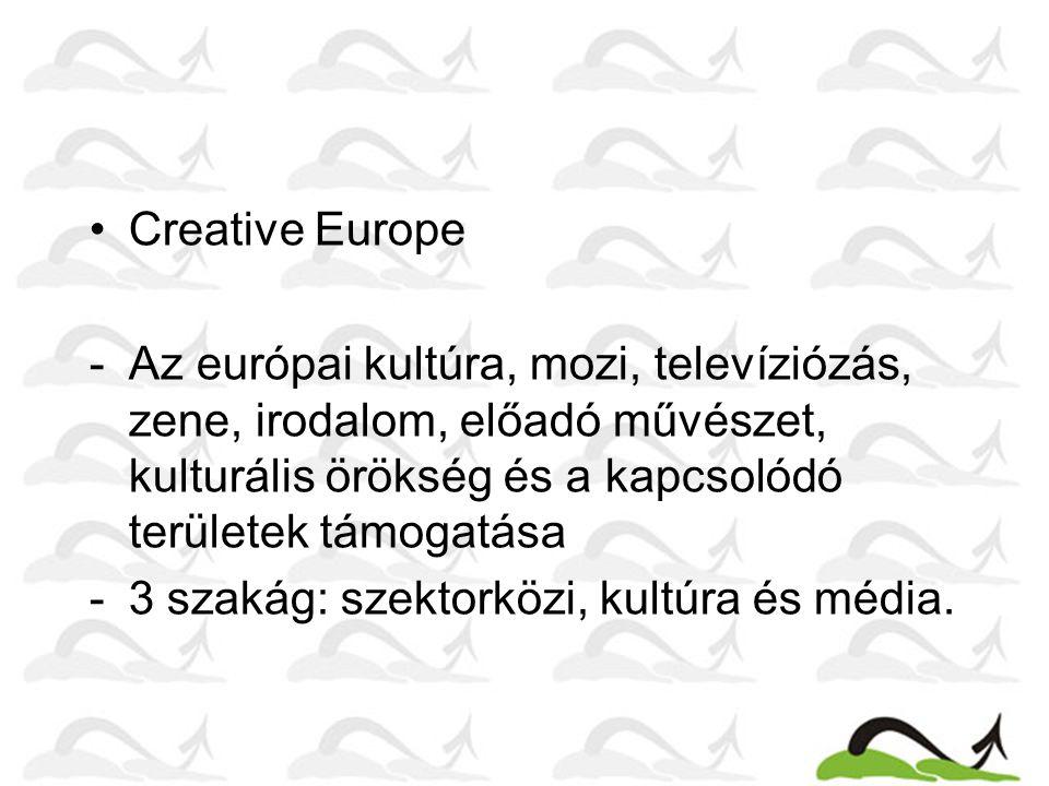 Creative Europe Az európai kultúra, mozi, televíziózás, zene, irodalom, előadó művészet, kulturális örökség és a kapcsolódó területek támogatása.