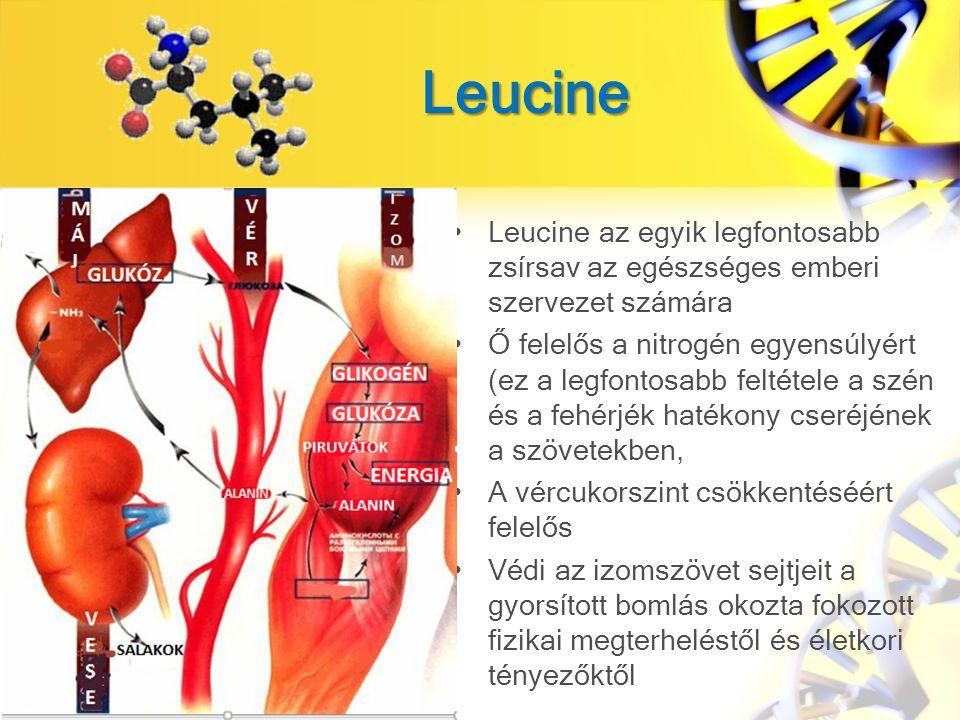 Leucine Leucine az egyik legfontosabb zsírsav az egészséges emberi szervezet számára.