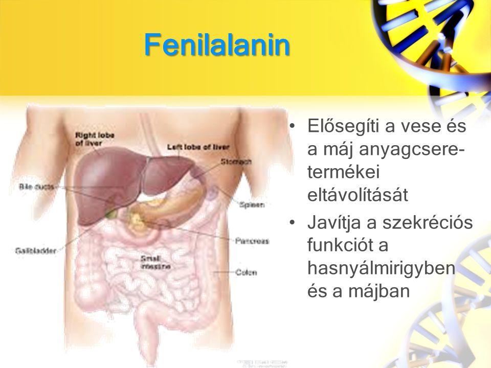 Fenilalanin Elősegíti a vese és a máj anyagcsere-termékei eltávolítását.