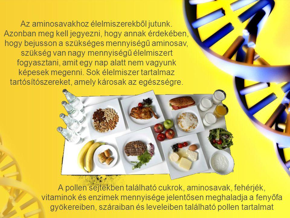 Az aminosavakhoz élelmiszerekből jutunk