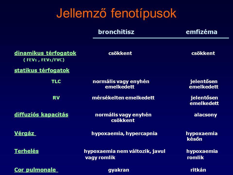 Jellemző fenotípusok bronchitisz emfizéma
