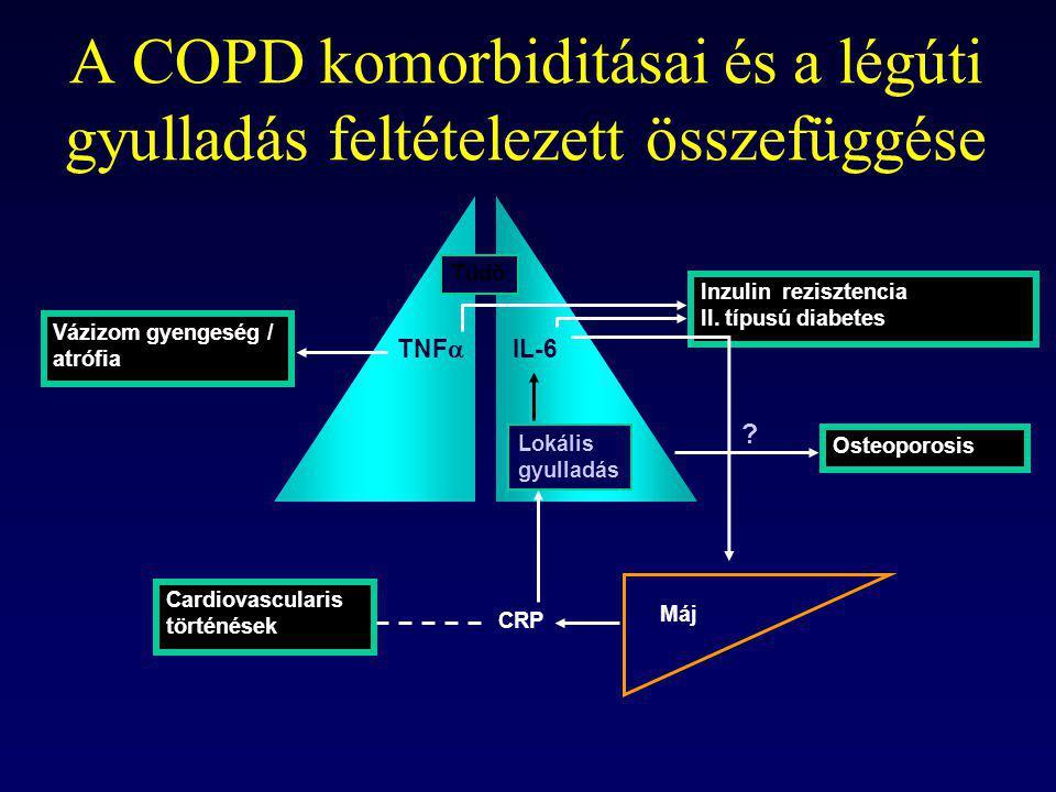 A COPD komorbiditásai és a légúti gyulladás feltételezett összefüggése