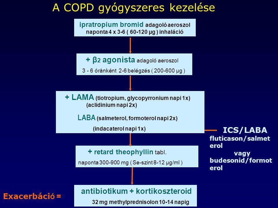 antibiotikum + kortikoszteroid