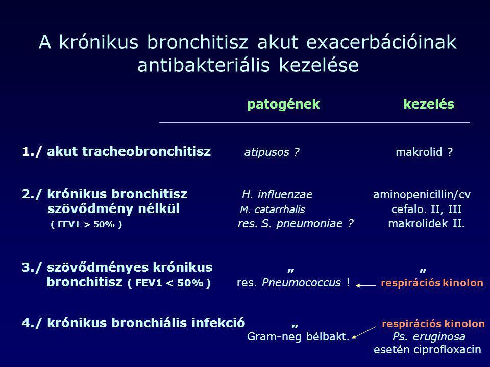 A krónikus bronchitisz akut exacerbációinak antibakteriális kezelése