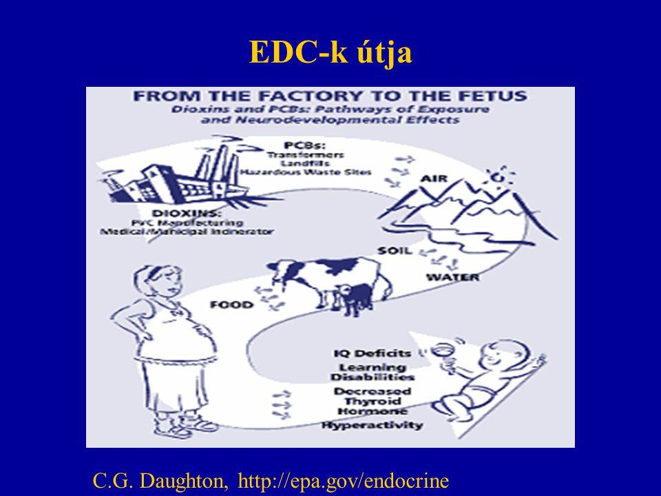 EDC-k útja C.G. Daughton, http://epa.gov/endocrine