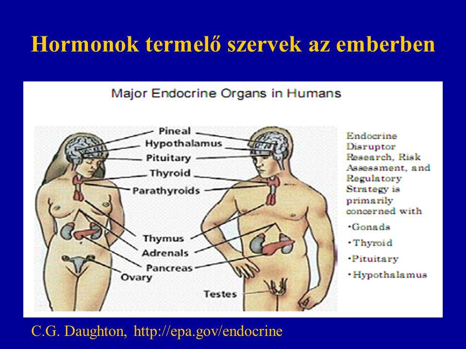 Hormonok termelő szervek az emberben