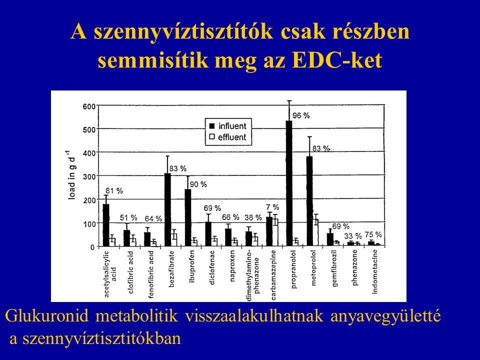 A szennyvíztisztítók csak részben semmisítik meg az EDC-ket