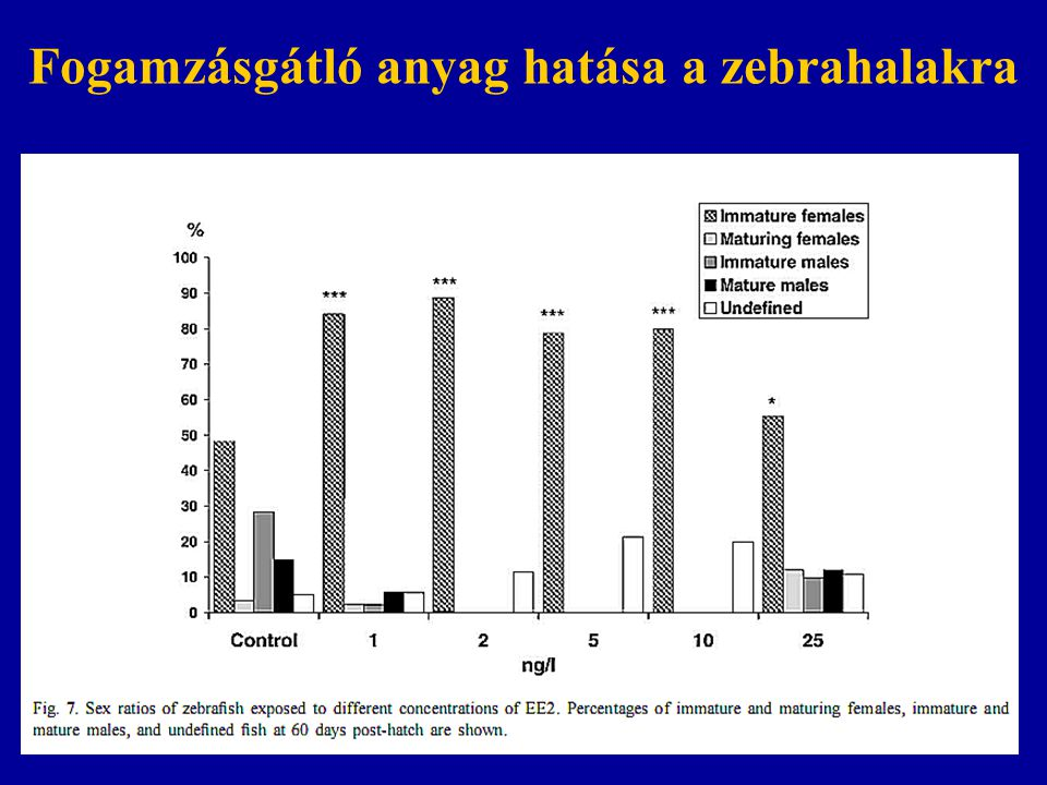 Fogamzásgátló anyag hatása a zebrahalakra